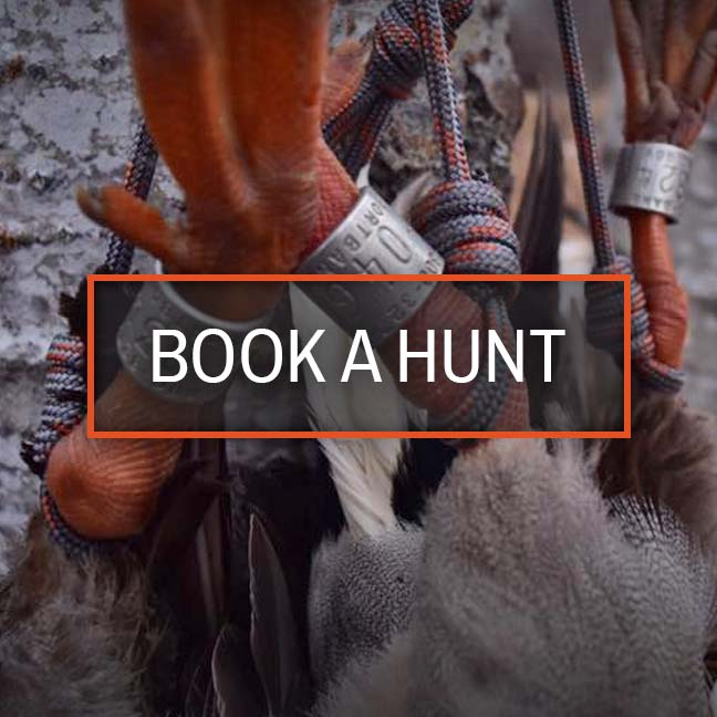 Book a Hunt with Field Quarter