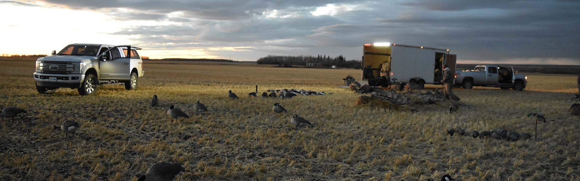Canadian Waterfowl Hunts With Field Quarter